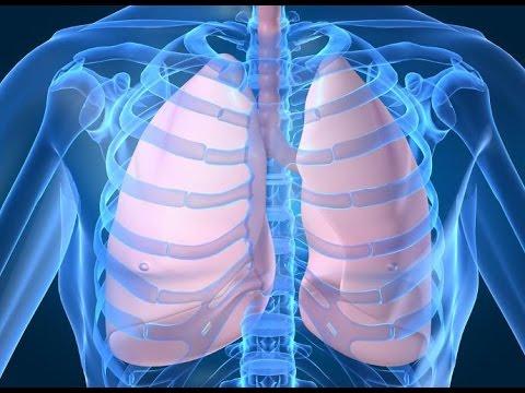 اكتشاف لبروتينات الرئيسية المرتبطة بسرطان الرئة