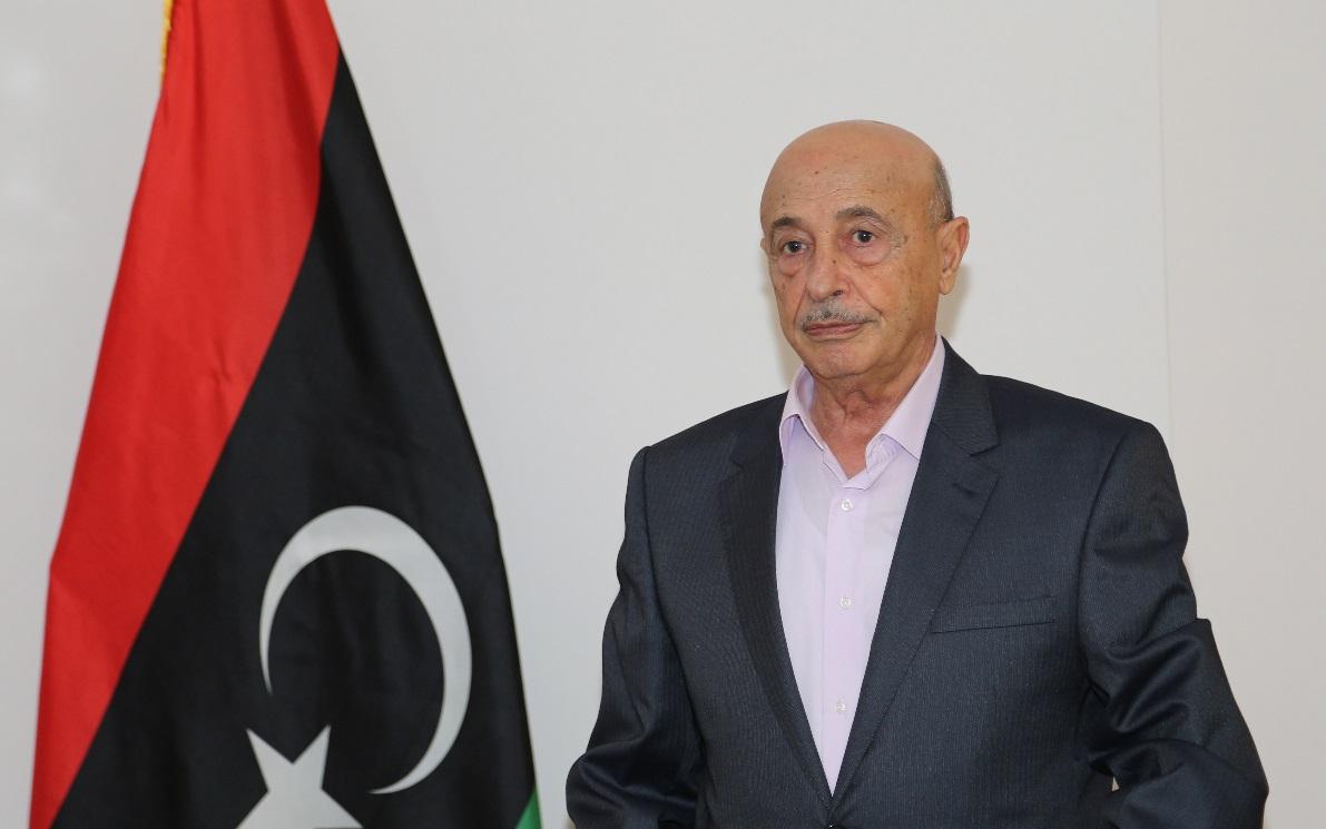رئيس النواب الليبي يؤكد الإصرار على إجراء الانتخابات بموعدها