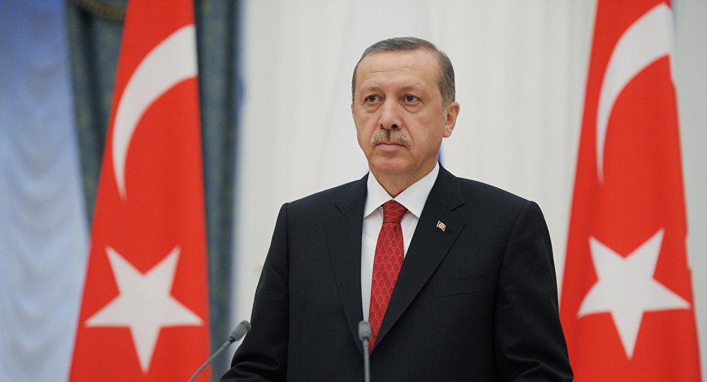 اردوغان  يعين نفسه رئيسا لصندوق الثروة التركي
