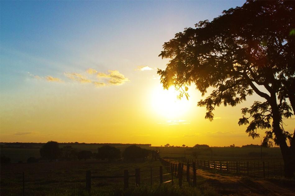 دراسة : تراجع فترات سطوع الشمس يزيد معدلات الإصابة بالكساح
