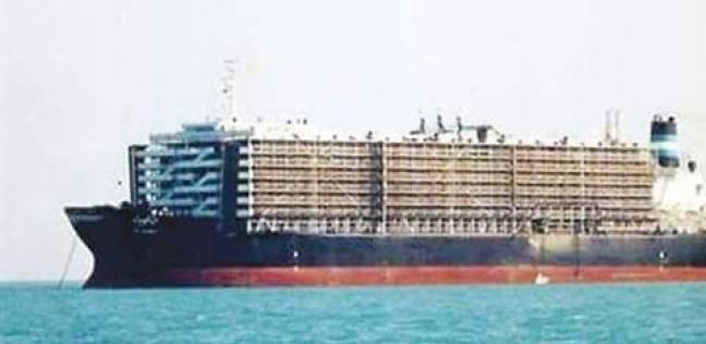 تداول 25 سفينة بموانيء بورسعيد