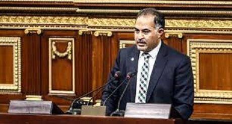 وكيل البرلمان : الشباب سلاح الرئيس السيسي في بناء الدولة المصرية