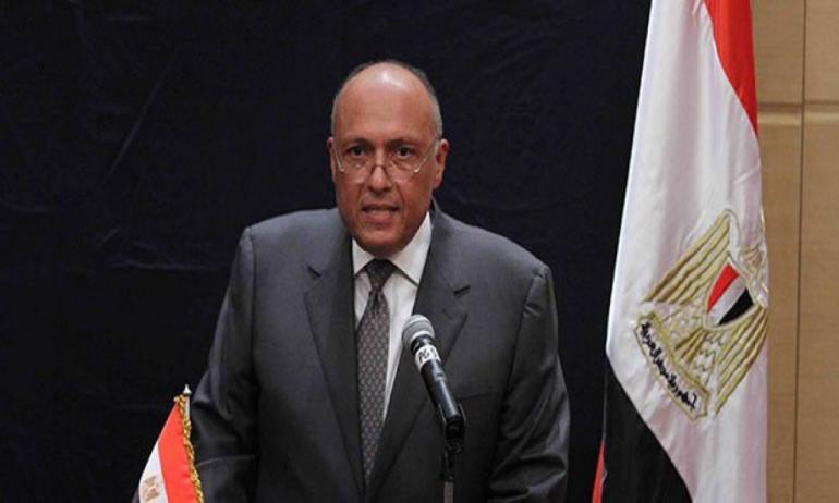 شكري يبحث مع نظيره الألمانى جهود مصر فى مكافحة الإرهاب