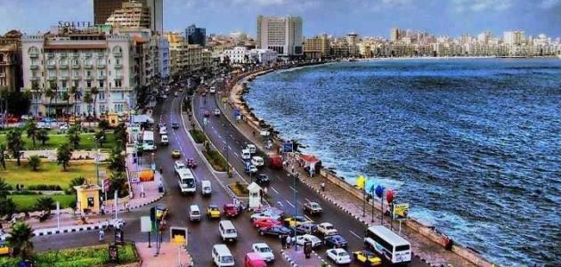 سقوط أمطار على الثغر واستمرار الملاحة ببوغازي الإسكندرية والدخيلة