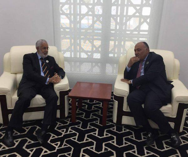 سامح شكري يؤكد أهمية تولى ليبيا مقاليد الأمور دون تدخل خارجي