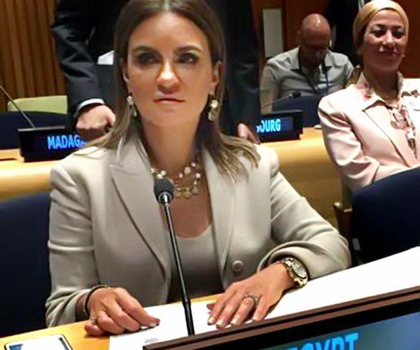 الأمم المتحدة : تجربة مصر الإصلاحية تعتد مثالا رائدا في أفريقيا