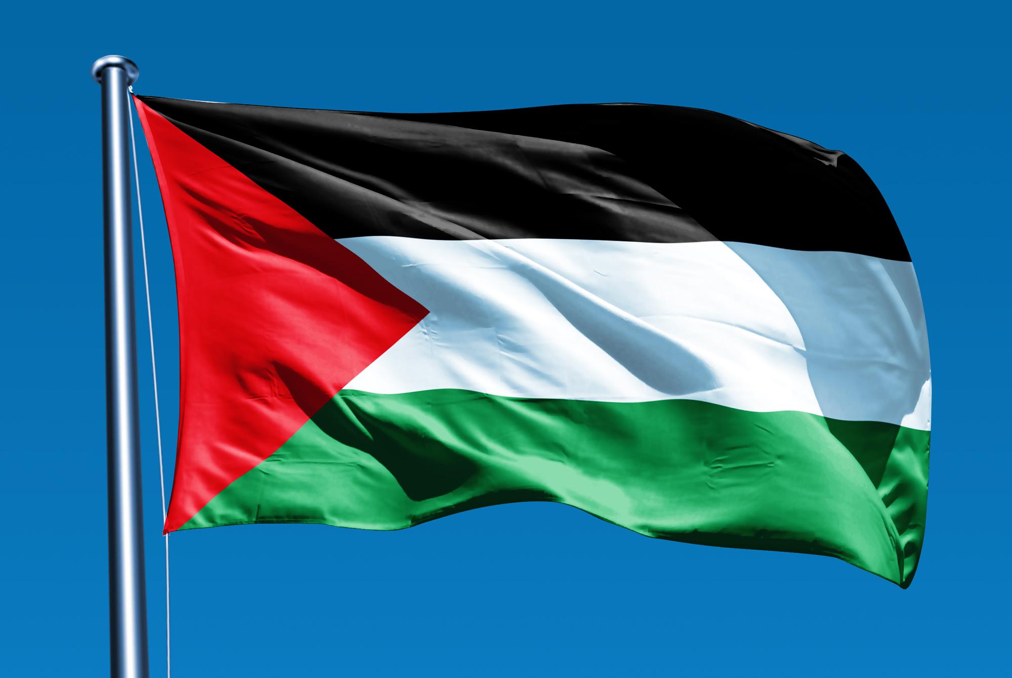 فلسطين تدين جريمة إعدام شاب فلسطيني وتحمل دولة الاحتلال المسؤولية