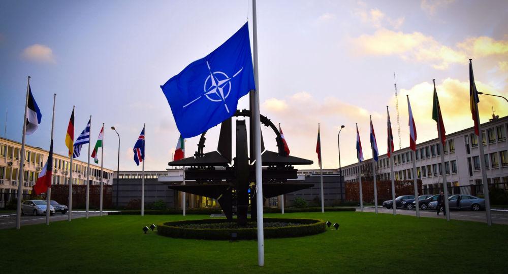 مسئولة في الناتو تدعو روسيا لسحب جنودها من أراضي جورجيا 2