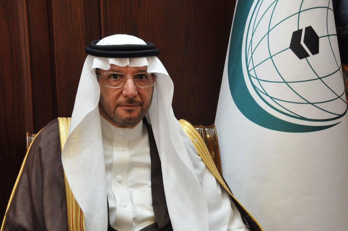 """""""التعاون الإسلامي"""" تدين تعمد الحوثيين استهداف المدنيين بالسعودية"""