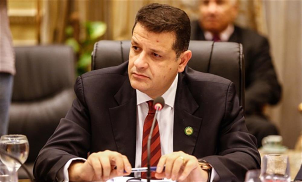 """لجنة حقوق الإنسان بالبرلمان ترفض محاولات تسيس قضية """"حنين حسام"""""""