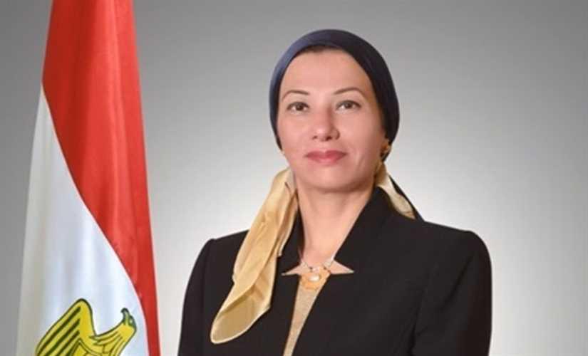ياسمين فؤاد  تشارك في الاجتماع التنسيقي للمجموعة العربية التفاوضية