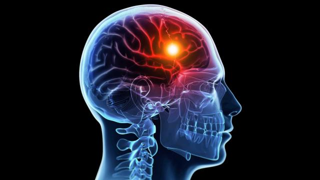 دوائر في المخ تتعرف بسرعة على المشاعر