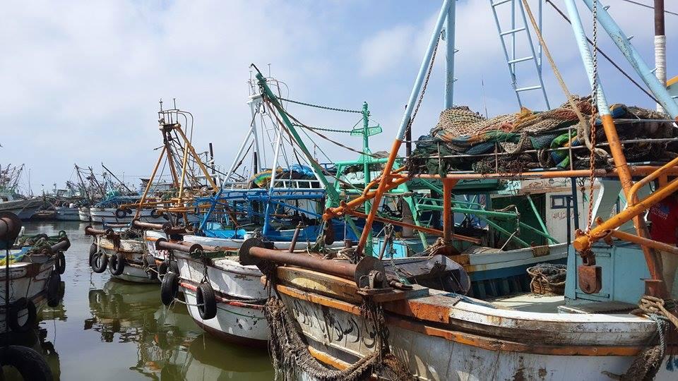 إغلاق ميناء البرلس بسبب سوء الأحوال الجوية