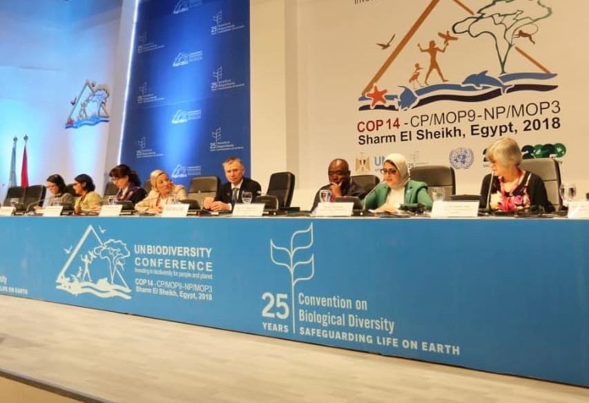 إطلاق التحالف الدولي للطبيعة والثقافة من مؤتمر التنوع البيولوجي بشرم الشيخ