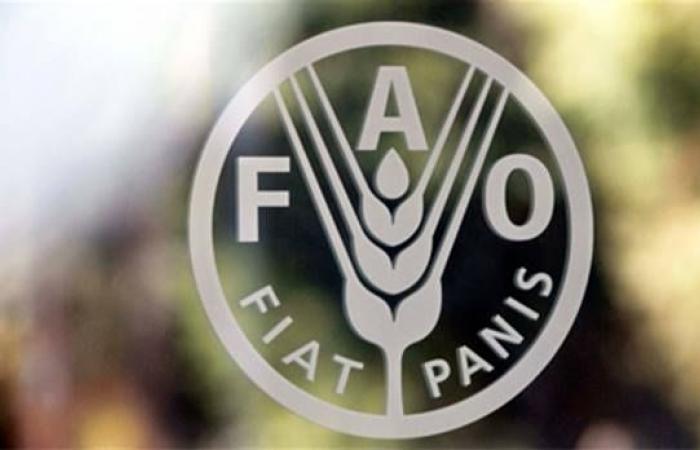 الفاو تسلم 5 صوب و5 أنفاق زراعية لخمس قرى في الفيوم