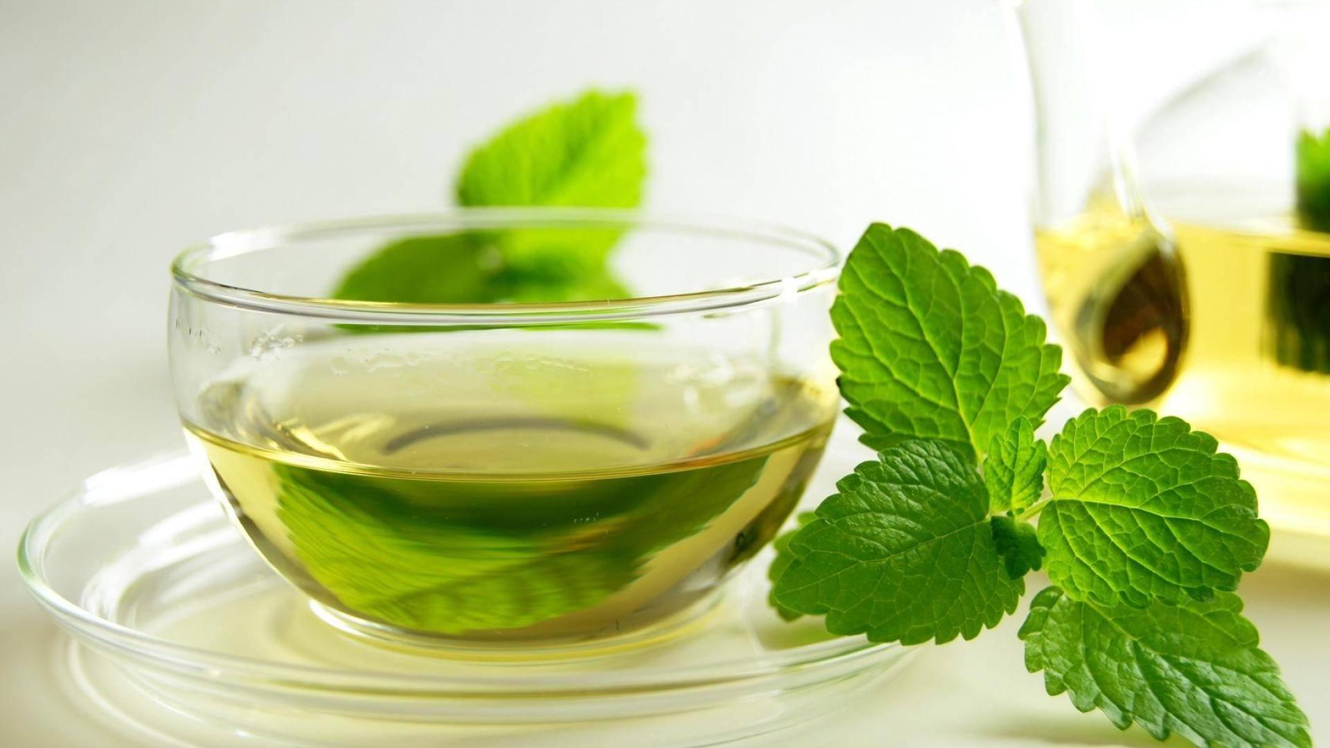 دراسة: تناول أطعمة تحتوى على مستخلص الشاي الأخضر يقلل من فرص الإصابة بفيروس نورو