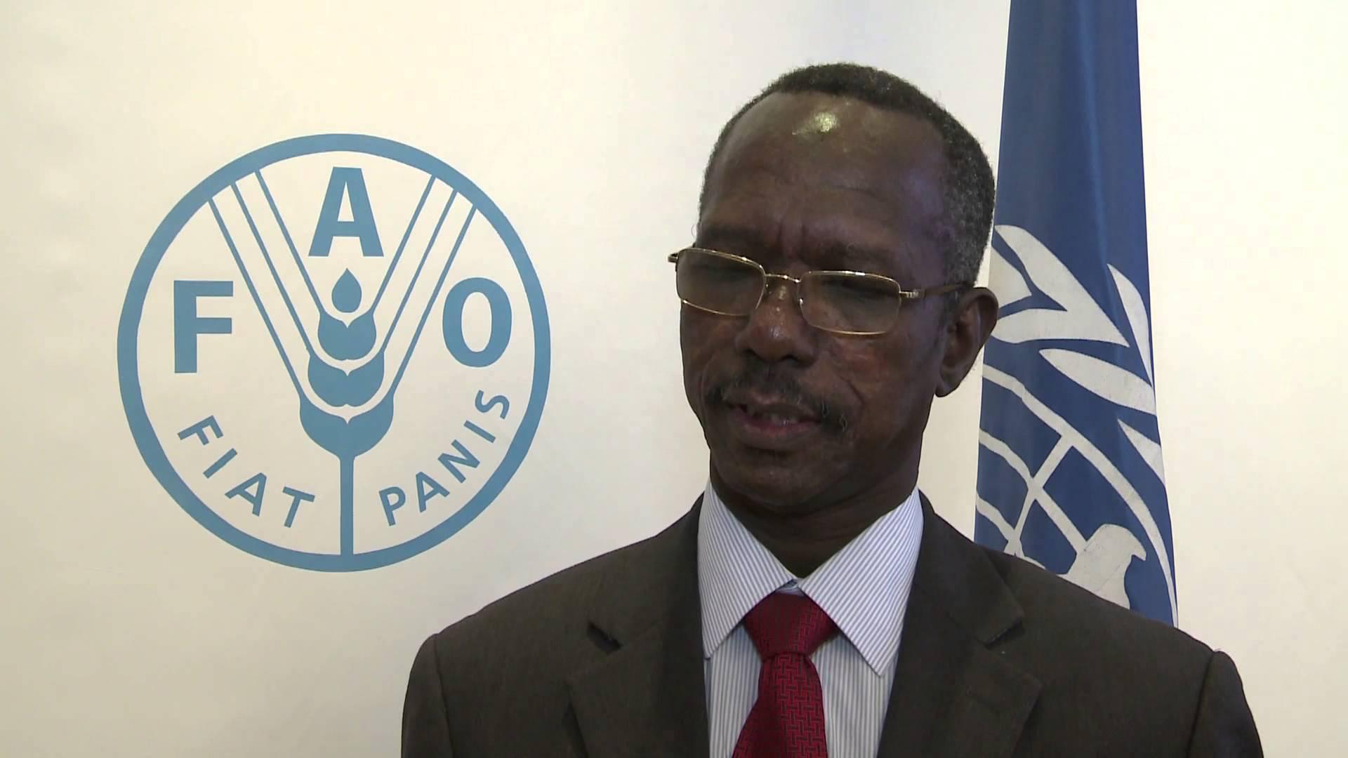 مساعد الرئيس السودانى يؤكد جدية الحكومة فى تحقيق السلام فى جنوب كردفان