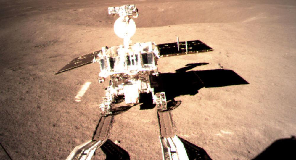 الصين تعلن عن أول بذرة قطن تنبت على سطح القمر