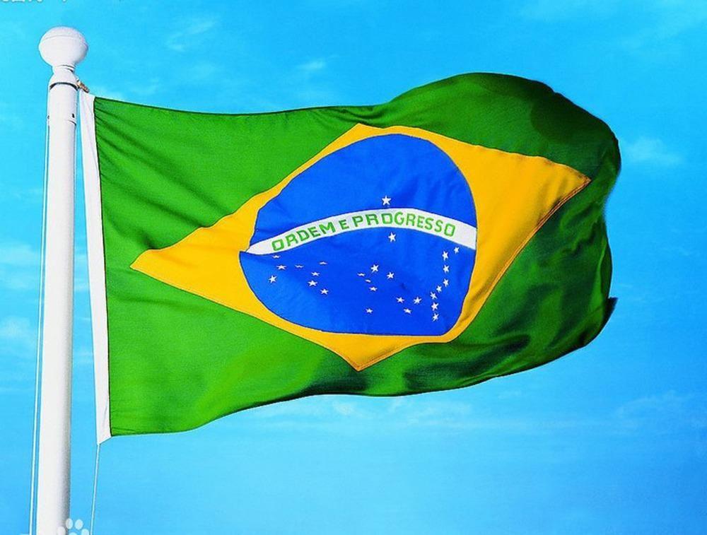 البرازيل تغير موقفها بشأن المساعدات المقدمة لإخماد حرائق الأمازون