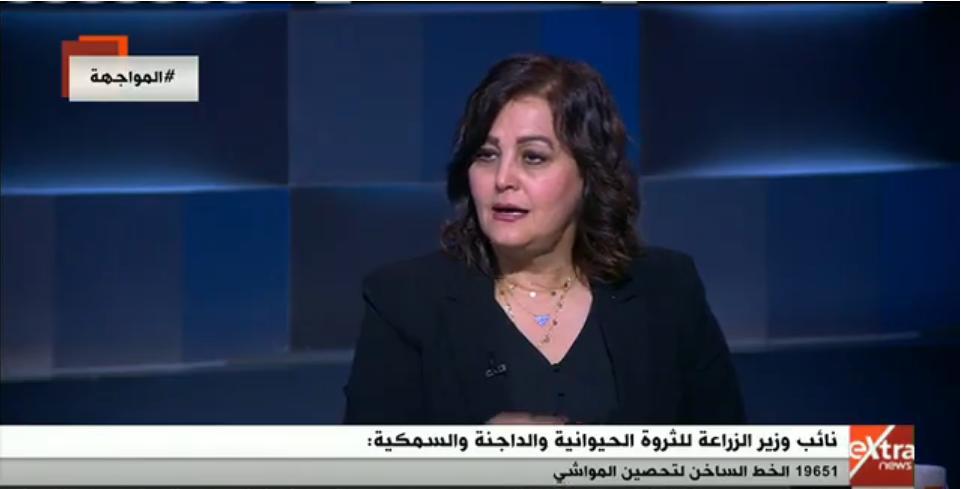 بالفيديو| تعرف على خطة مصر لزيادة إنتاجية الثروة الحيوانية والداجنة والسمكية