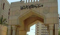"""مرصد الأزهر يدين مقتل 11 شخصا بهجوم لتنظيم """"داعش"""" شمال شرق نيجيريا"""