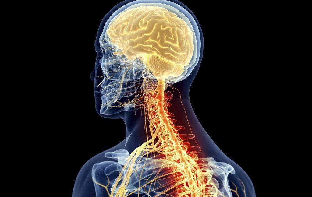 دراسة: مؤشر كتلة الجسم يلعب دورا مهما في تطور مرض التصلب المتعدد