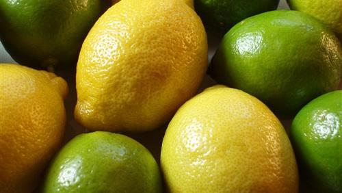 المجمعات الاستهلاكية تطرح الليمون بـ 45 جنيها للكيلو