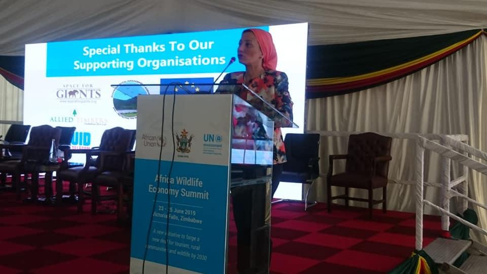وزيرة البيئة تطرح رؤية مصر بالقمة الأفريقية في زيمبابوي