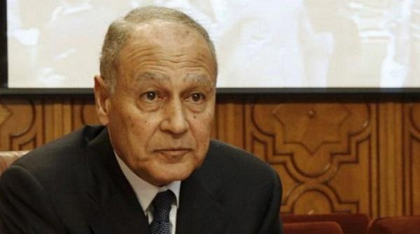 أبو الغيط : العلاقات العربية الأوروبية تقف على أساس متين من الرؤى المشتركة
