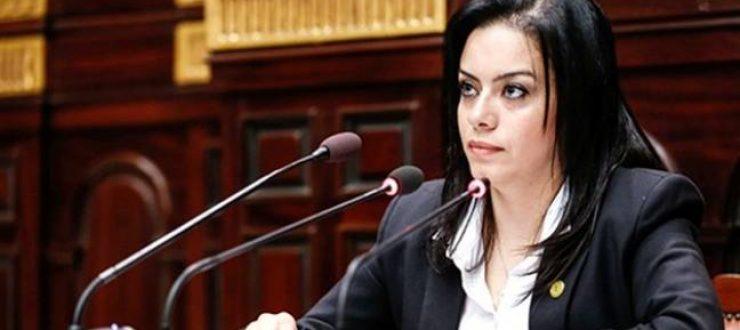 سيلفيا نبيل تهنئ الرئيس السيسي والشعب المصري بعيد الأضحى