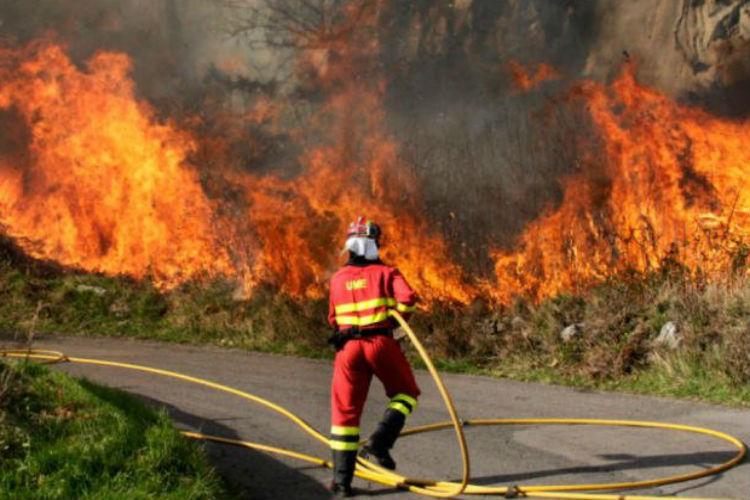 إحصاء: حرائق الغابات كلفت روسيا 106 ملايين دولار