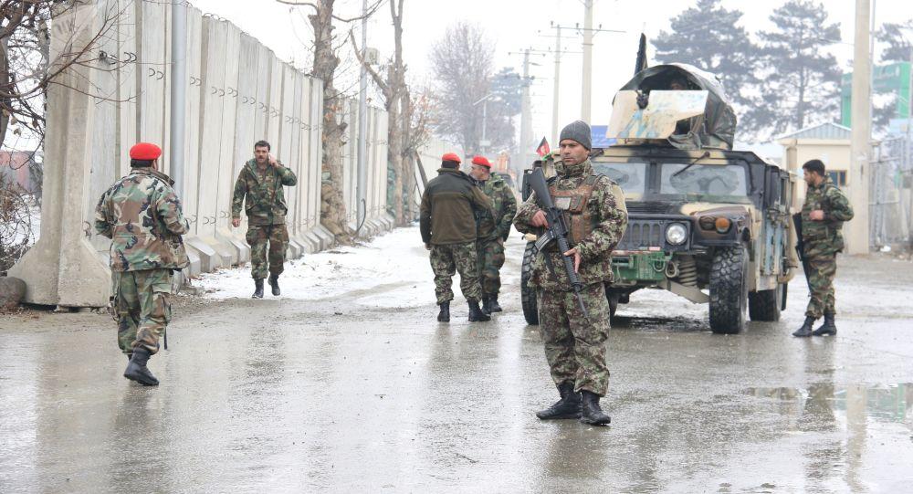 نيويورك تايمز : واشنطن تسعى لطمأنة الجيش الأفغاني وسط غموض حول سلام وشيك مع طالبان