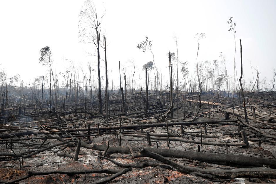 واشنطن بوست: العالم يرغب في إخماد حرائق الأمازون ورئيس البرازيل يراها تدخلاً