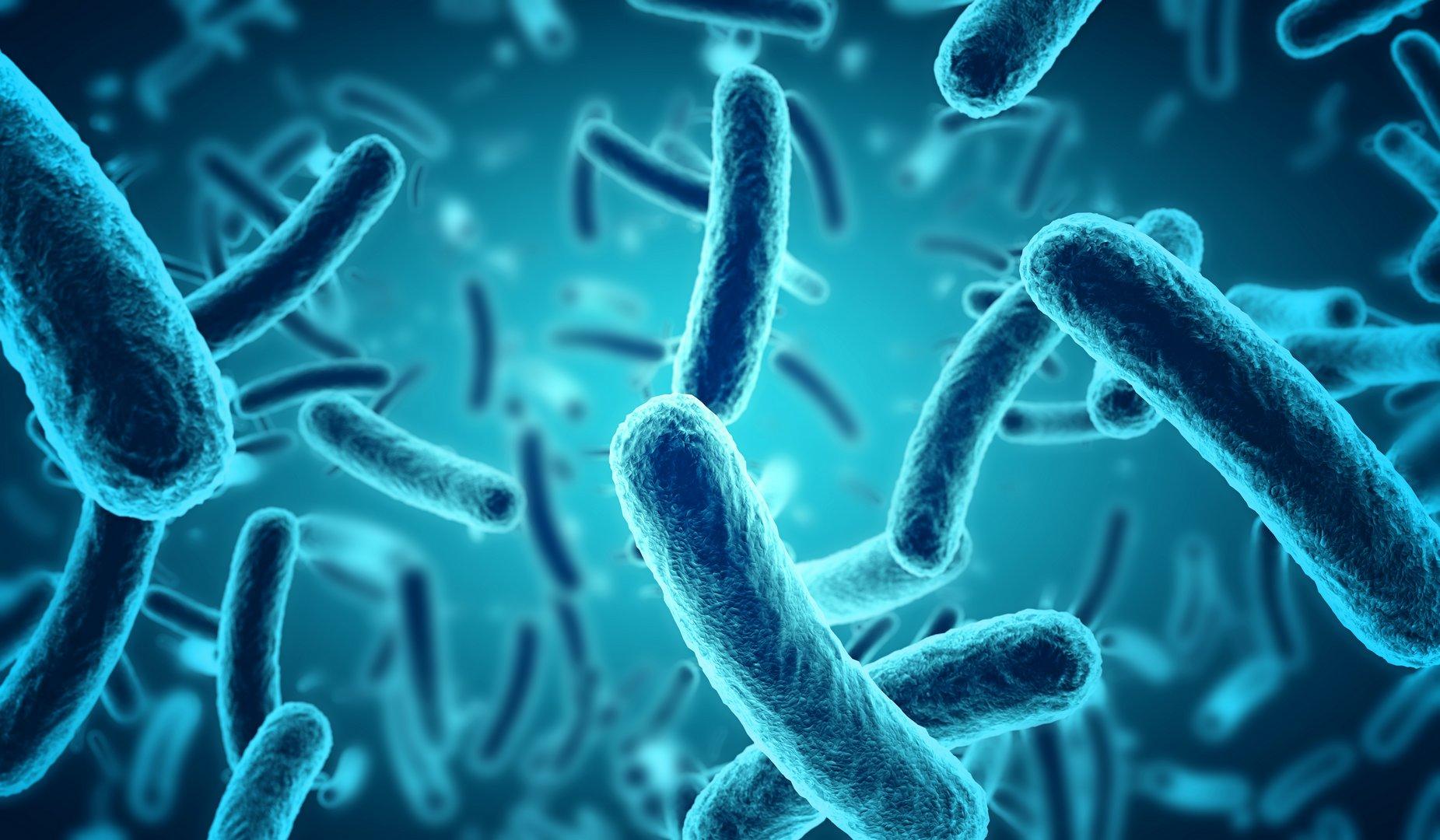 دراسة : الميكروبات قد تلعب دورا في بداية الأزمة القلبية