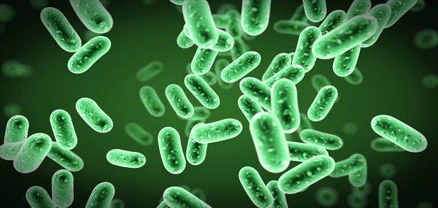 ضعف الجهاز المناعي مرتبط بالعدوى البكتيرية الخطيرة لدى الأطفال
