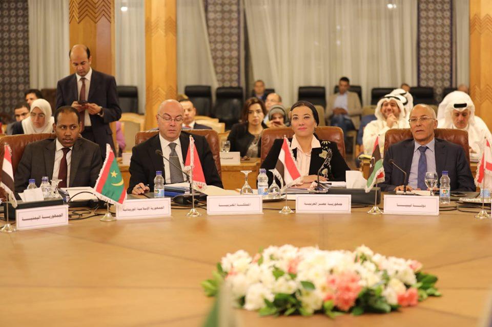 صور | «فؤاد» تطرح رؤية مصر أمام مجلس الوزراء العرب المسئولين عن البيئة
