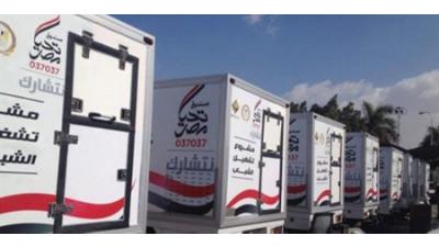 صندوق تحيا مصر5