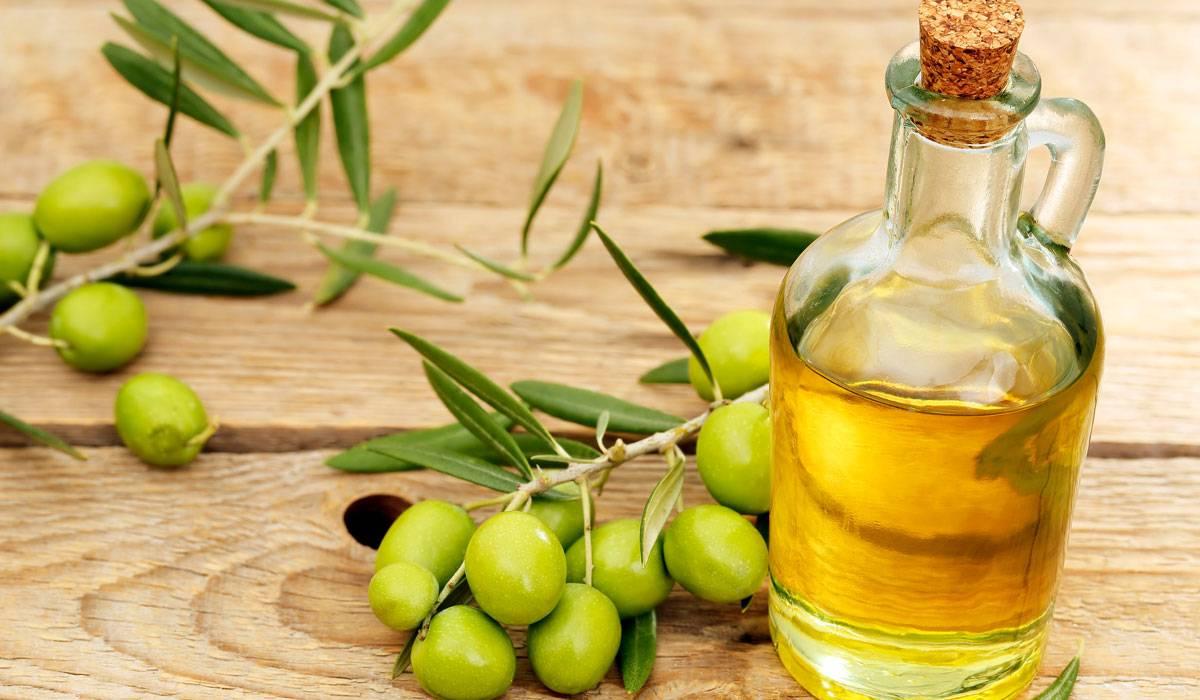 دراسة: زيت الزيتون البكر يقلل من الأمراض المرتبطة بالشيخوخة