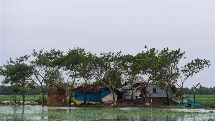ارتفاع عدد قتلى إعصار بلبل في بنجلاديش إلى 12 شخصا