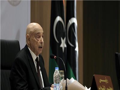 البرلمان الليبي: سنستعين بالعرب حال التدخل التركي لاحتلال البلاد