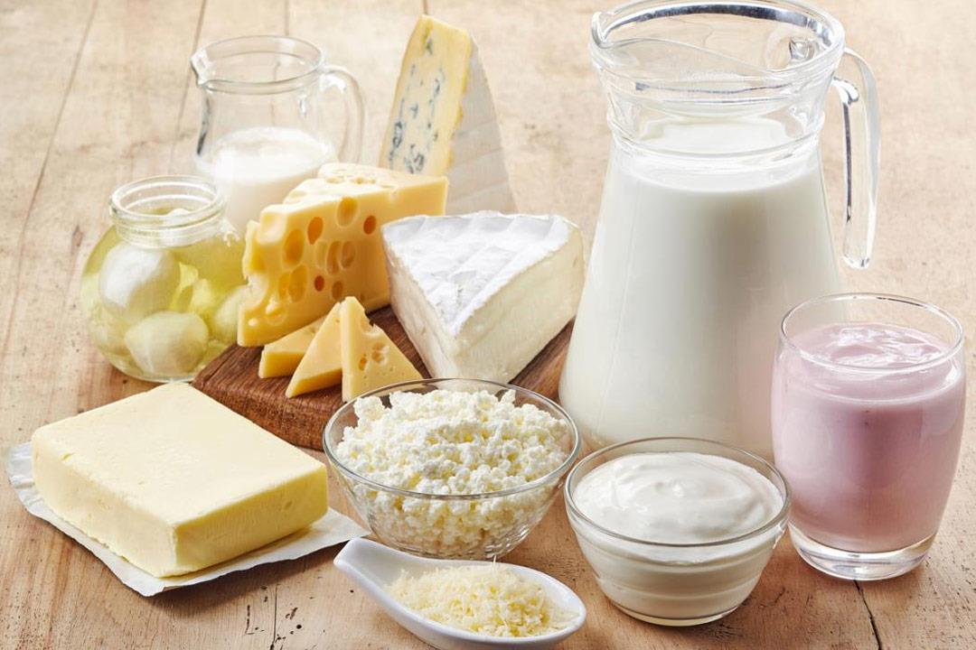 دراسة: منتجات الألبان لا تحمي السيدات عند التقدم في العمر من كسر العظام