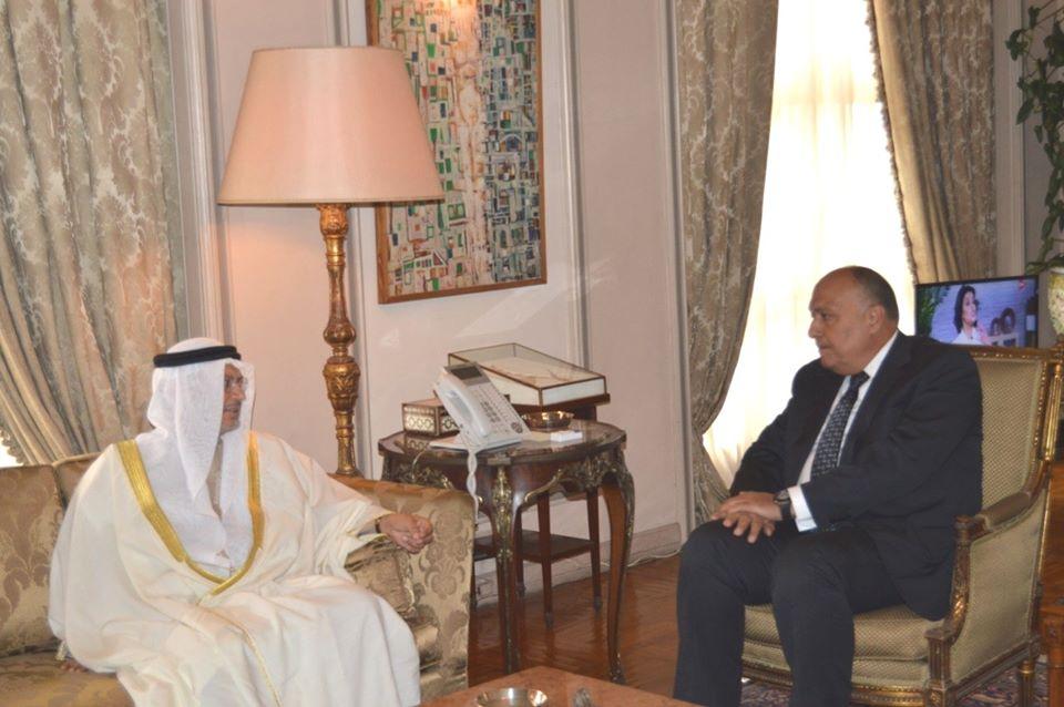 سامح شكرى يبحث مع وزير خارجية الإمارات الأزمات الإقليمية ومجالات التعاون