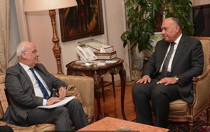 وزير الخارجية يبحث مع صائب عريقات تعاون مصر وفلسطين لمواجهة كورونا