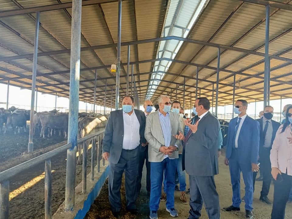 صور | وزير الزراعة ومحافظ البحيرة يتفقدان محطة الإنتاج الحيواني وتصنيع الالبان بغرب النوبارية