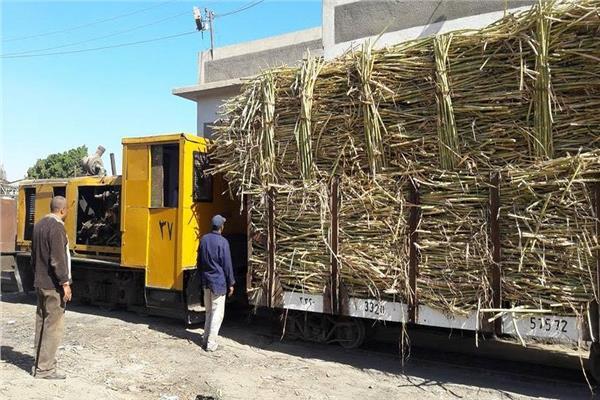الحكومة: لا صحة لتصريف مخلفات مصنع سكر نجع حمادي في نهر النيل