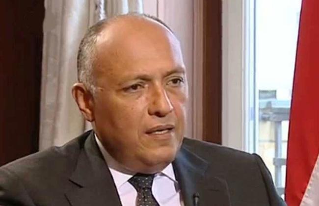 فيديو  وزير الخارجية: مصر وفرت الكثير من الفرص لحل أزمة سد النهضة بالطرق السلمية