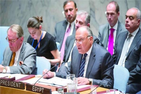 وزير الخارجية بمجلس الأمن: الملء الأحادي لسد النهضة يعرض الملايين للخطر