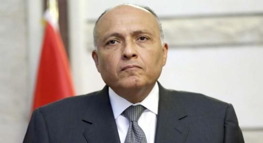 وزير الخارجية: لم نطلب أي عمل قسري من مجلس الأمن تجاه أثيوبيا بشأن سد النهضة
