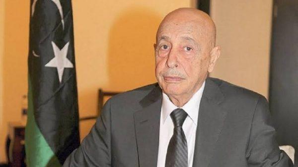 رئيس البرلمان الليبي: تصريحات «السيسى» جاءت استجابة لندائنا بمساندة قواتنا المسلحة