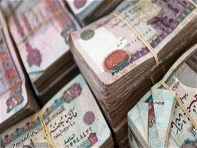 الأموال العامة تضبط 5 قضايا بقيمة 2 مليون جنيه